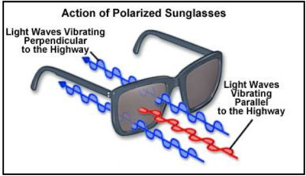 d4d879e1462 Figure 6 below illustrates a simplified summary of everything we just  discussed about polarization  glare reducing sunglasses!